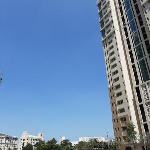 インド体験記 〜 大気汚染が劇的改善