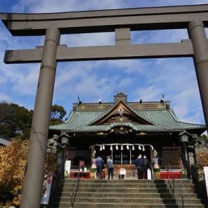 板倉町 雷電神社の蝋梅