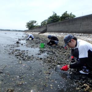 貝掘りはムキになる