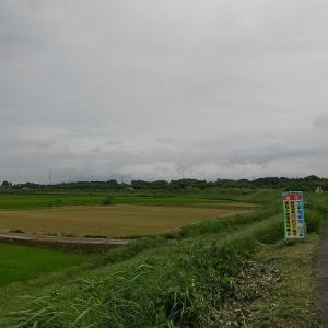 【頑張ろう日本】筑波山へ【コロナに負けるな】