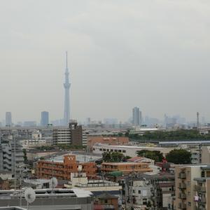 東京2020 東京パラリンピックの開会式