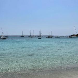 サルデーニャの夏2021:後編/COVID-19