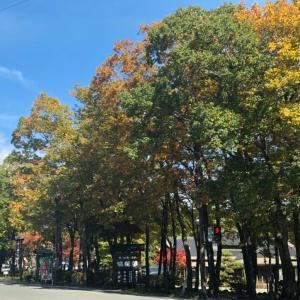 駒止めの滝~南湖公園【紅葉】