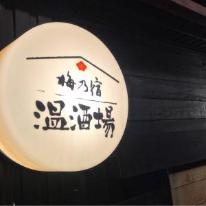 5時入店 梅乃宿 温酒場