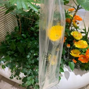 日比谷花壇 ハナノヒ イイハナ