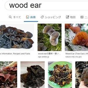 WOOD EARS
