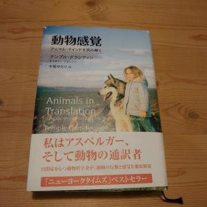 """""""犬についてもっと学ぼう!""""  HIJIRIもお勉強始めました!"""