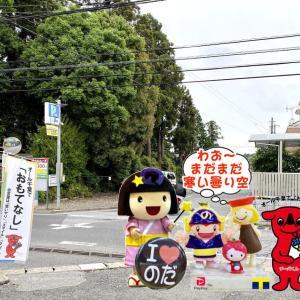野田市土産~醤油スイーツ類を半額!&一時休止のお知らせ・・・