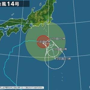 日本の台風!タイの台風!