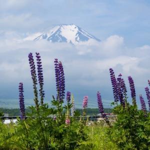 2か月ぶりの富士山は