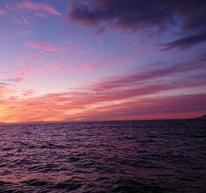 9月21日ヒラメ 小樽つり船シェイク