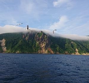7月21日ヒラメ 小樽つり船シェイク