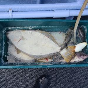 9月23日ヒラメ 小樽遊漁船シェイク