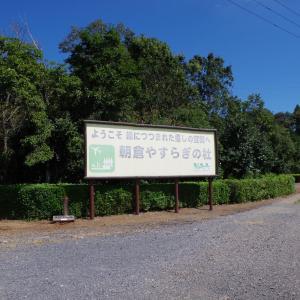ひこうきの丘から空港撮影(1日目その11)