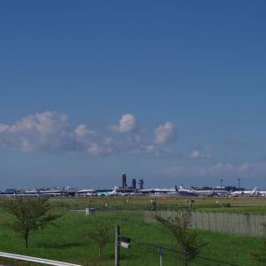 航空機を見てから白い塔の寺へ(1日目その12)