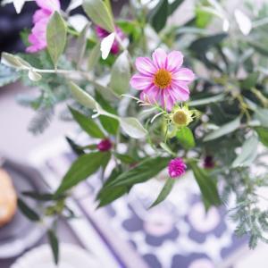 秋に飾りたい花♪コスモス!定番カラーのピンク色や白、黄色、オレンジ色まで様々♡