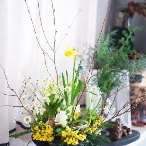 球根花が登場!春の森をイメージした♪パリスタイルアレンジ【2月フラワーレッスンのご案内】