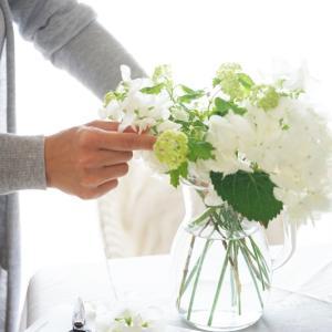 ガラス花瓶で透明感♪紫陽花の涼しげな飾り方♡