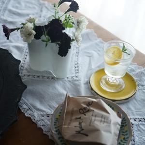 ベランダガーデンの白黒ペチュニアでモノトーンのシックな花アレンジ♪