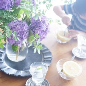 紫陽花+グリーンで爽やかな森の中にいる気分に~♪梅雨時期のオススメ花合わせ♡