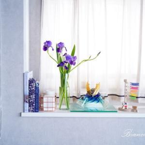 端午の節句に菖蒲の花♪ハナショウブ、アヤメの飾り方と見分け方♡