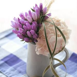 リンドウを可愛く活けるコツ!秋のお花を楽しもう♪