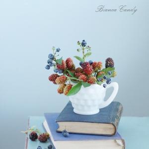 夏にオススメ♪ベリー類!実もの特集vol.2【ブラックベリー&ブルーベリー】