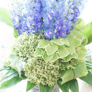 夏の青い花で爽やかに~♪マリンブルー色の花特集!