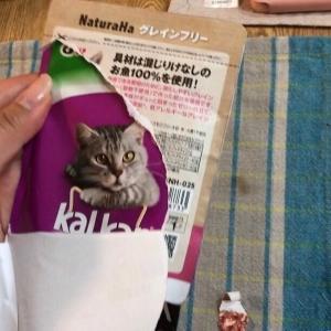 ★猫のアレルギー偽装食品で体調を崩す【拡散希望】