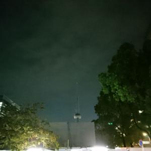 TV塔が(。・_・。)