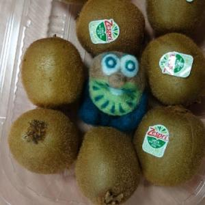キウィ人形完成・・・羊毛フェルト~♪ & ヒラソーダの刺身と漬け丼~♪