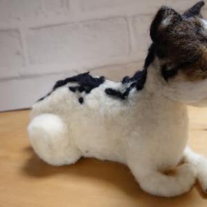 背中の植毛・・羊毛フェルト猫さん~♪ & 天然マイタケのマイタケご飯と茶碗蒸し~♪ & イカの一夜干し~♪