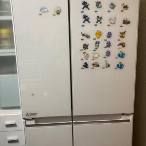 高1男子とポケモンパンと冷蔵庫