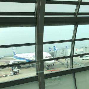 いざ熊本へ!