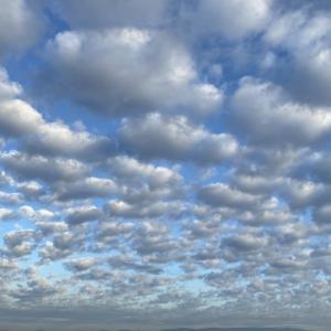 今朝の空🌥