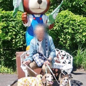 クマ・くま・クマーーー!!~ナツハルと行くレトロなクマ旅・2泊3日岐阜旅行②~