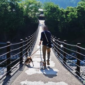早朝出発!橋を渡ってタイムスリップ~ナツハルと行くレトロなクマ旅・2泊3日岐阜旅行⑤.~