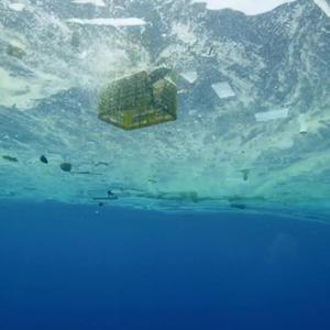 「プラスチックの海」今、プラスチック問題を考えないと地球が壊れちゃいます!海の生物を助けたい!
