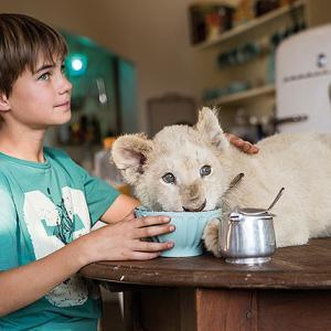 「ミアとホワイトライオン 奇蹟の1300日」白ライオンとミアの絆と南アフリカの社会問題を描きます