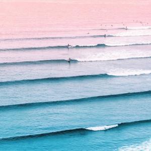 World Surf League Announces Return to Live Compe