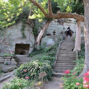 鎌倉 花の寺 竹林