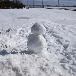 【ブログネタ枠】雪がたくさん積もったらうきうきしてしまう、そんな時代がありました【今は恐怖】