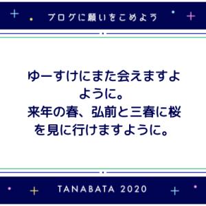 【ブログネタ枠】七夕の願い事2020【好きなものの話もする】