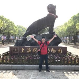上海旅行 2日目
