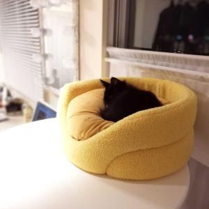 高いテーブルにベッド