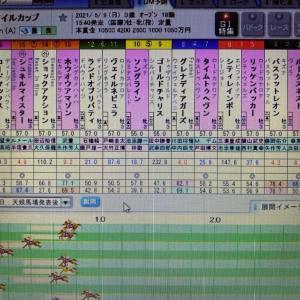 馬馬ブロ~NHKマイルは例の馬券で勝負する~大穴ねらいかな・・(笑)