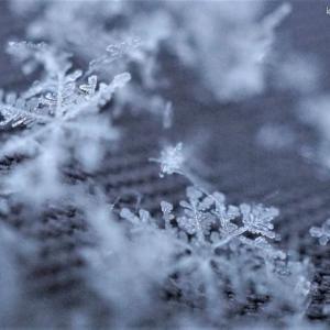 雪&MISIA - ♪白い季節♪
