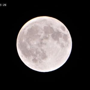 昨日の満月と♪月のしずく♪
