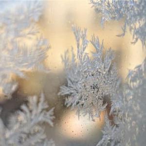 窓霜と♪DEAR...again♪