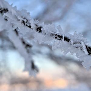 2021年の樹氷♪樹氷の街♪